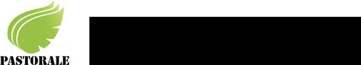 株式会社パストラーレ